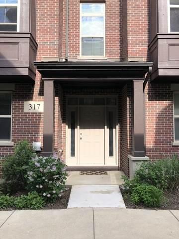 317 Alpine Springs Drive, Vernon Hills, IL 60061 (MLS #10898272) :: John Lyons Real Estate