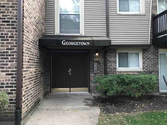 301 N Carter Street #204, Palatine, IL 60067 (MLS #10902106) :: Lewke Partners