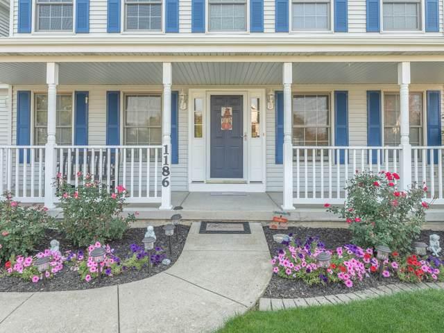 1186 Homestead Drive, Yorkville, IL 60560 (MLS #10902188) :: Lewke Partners