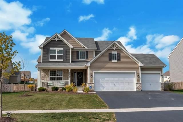 1503 Barberry Way, Joliet, IL 60431 (MLS #10902453) :: John Lyons Real Estate
