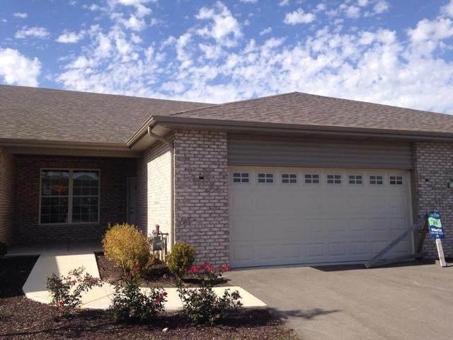 1307 Balboa Circle, Bolingbrook, IL 60490 (MLS #10902740) :: Littlefield Group