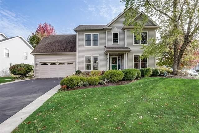 806 Meadow Lane, North Aurora, IL 60542 (MLS #10902870) :: Helen Oliveri Real Estate
