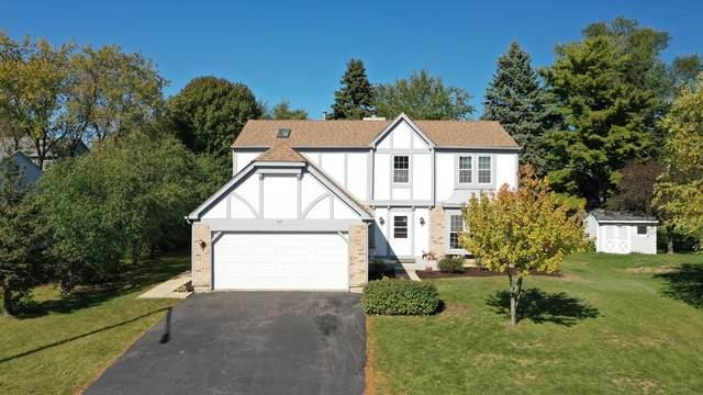 740 Edelweiss Drive, Lake Zurich, IL 60047 (MLS #10902889) :: John Lyons Real Estate