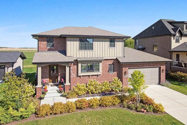 14628 Kildare Street, Homer Glen, IL 60491 (MLS #10903204) :: The Wexler Group at Keller Williams Preferred Realty
