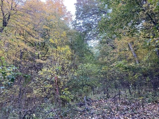 1793 Blueberry Drive, Varna, IL 61375 (MLS #10903428) :: John Lyons Real Estate