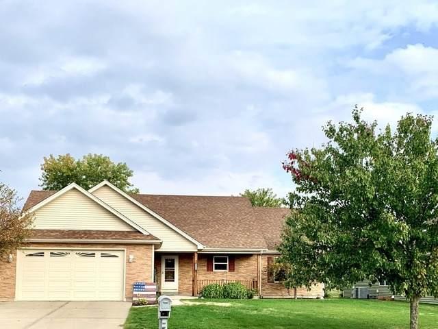 965 S Sandstone Drive, Diamond, IL 60416 (MLS #10903531) :: Helen Oliveri Real Estate