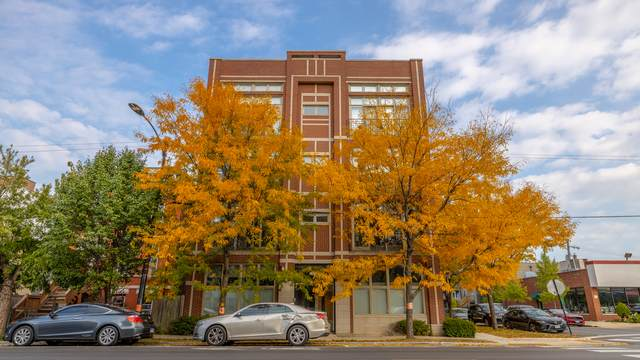 3101 N California Avenue 3S, Chicago, IL 60618 (MLS #10903734) :: Helen Oliveri Real Estate