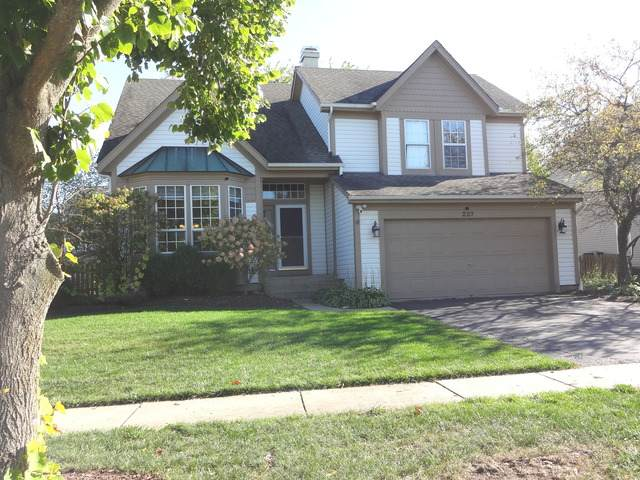 227 Shawnee Circle, Bartlett, IL 60103 (MLS #10904074) :: John Lyons Real Estate