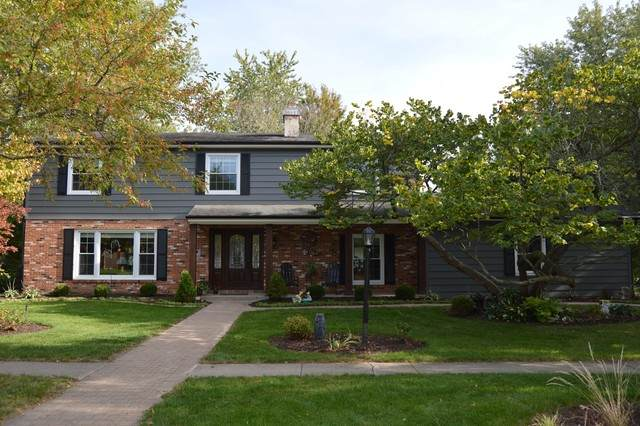 113 Briar Lane, Morris, IL 60450 (MLS #10904291) :: The Wexler Group at Keller Williams Preferred Realty