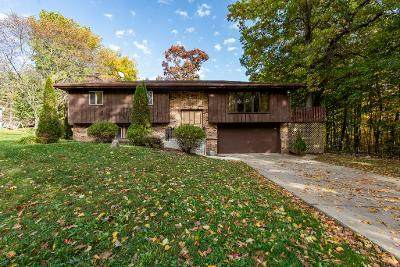 345 Kirkwood Avenue, Winthrop Harbor, IL 60096 (MLS #10905041) :: Janet Jurich