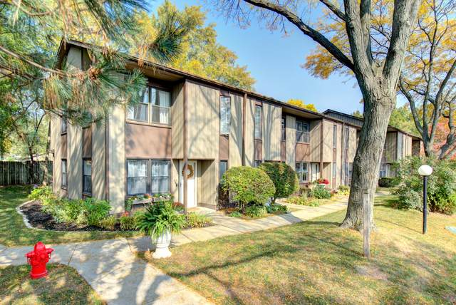 614 N Hough Street A, Barrington, IL 60010 (MLS #10905084) :: Helen Oliveri Real Estate