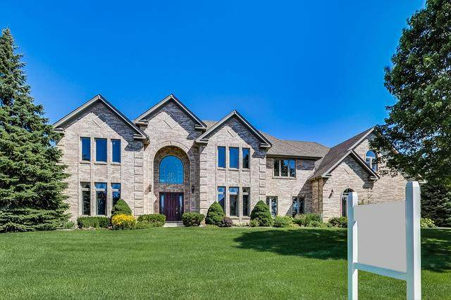 49 Park View Lane, Hawthorn Woods, IL 60047 (MLS #10905207) :: Property Consultants Realty