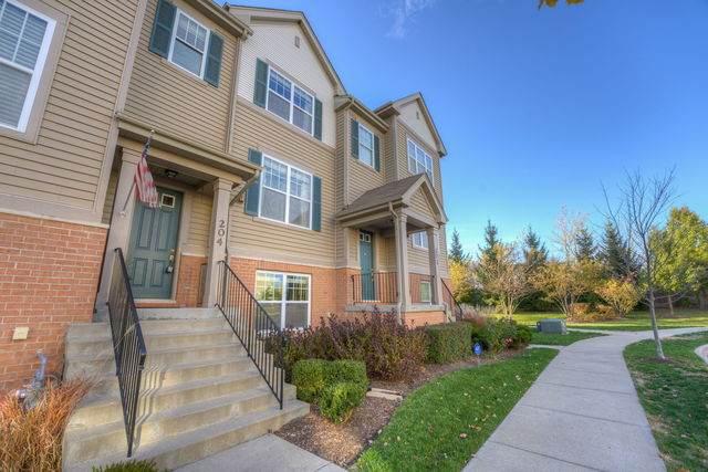 204 Wildflower Street, Des Plaines, IL 60016 (MLS #10905220) :: John Lyons Real Estate