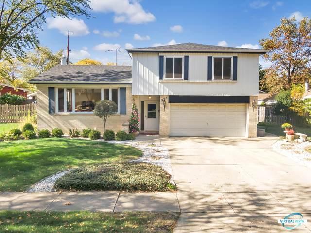226 Terry Lane, Villa Park, IL 60181 (MLS #10905223) :: Jacqui Miller Homes
