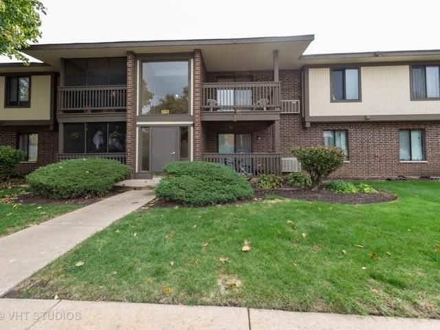 592 Somerset Lane #6, Crystal Lake, IL 60014 (MLS #10905698) :: Lewke Partners