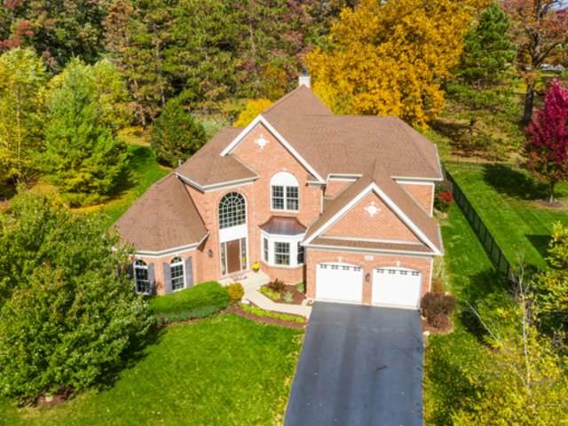 447 Lake Run Court, North Aurora, IL 60542 (MLS #10905835) :: Helen Oliveri Real Estate