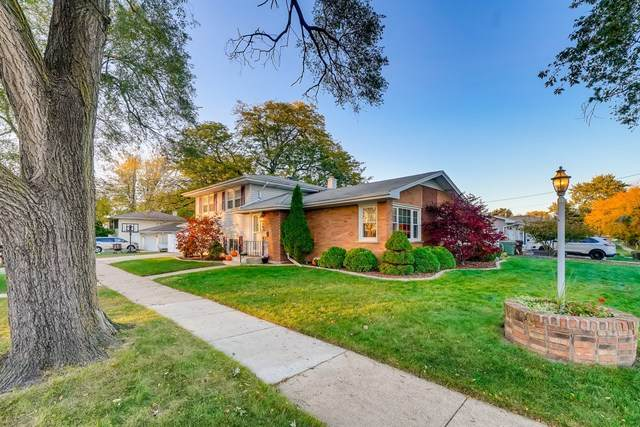 16836 Odell Avenue, Tinley Park, IL 60477 (MLS #10906184) :: Touchstone Group