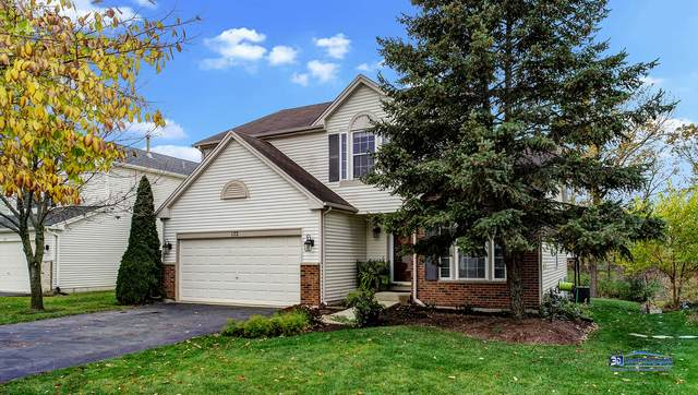 172 S Waterford Drive, Round Lake, IL 60073 (MLS #10906333) :: Lewke Partners