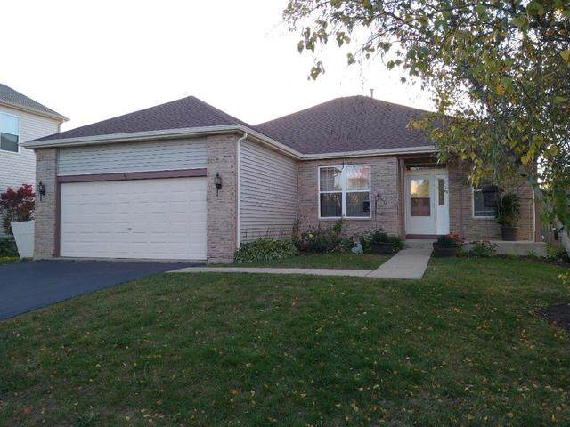 120 N Inverness Court, Round Lake, IL 60073 (MLS #10906681) :: Janet Jurich