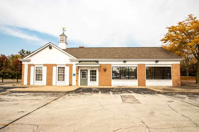 920 Voorhees Street, Danville, IL 61832 (MLS #10906834) :: Helen Oliveri Real Estate