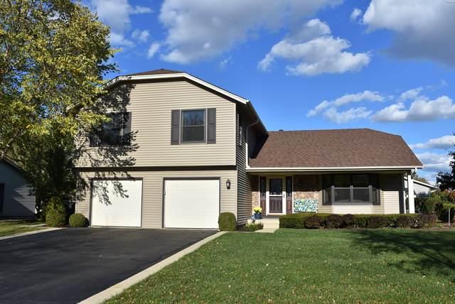 494 Franklin Lane, Elk Grove Village, IL 60007 (MLS #10906900) :: The Dena Furlow Team - Keller Williams Realty