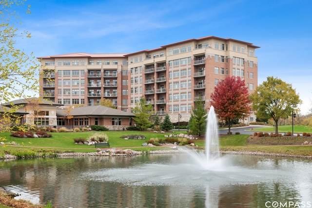 100 Prairie Park Drive #309, Wheeling, IL 60090 (MLS #10907595) :: Helen Oliveri Real Estate