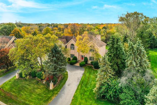 8 Rutgers Court, Hawthorn Woods, IL 60047 (MLS #10907877) :: Helen Oliveri Real Estate