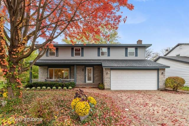 915 Sussex Court, Buffalo Grove, IL 60089 (MLS #10907945) :: Helen Oliveri Real Estate