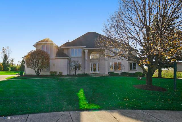 21444 Coach Drive, Mokena, IL 60448 (MLS #10907992) :: The Wexler Group at Keller Williams Preferred Realty