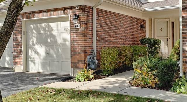 239 Steeplechase Court, Schaumburg, IL 60173 (MLS #10907993) :: Helen Oliveri Real Estate