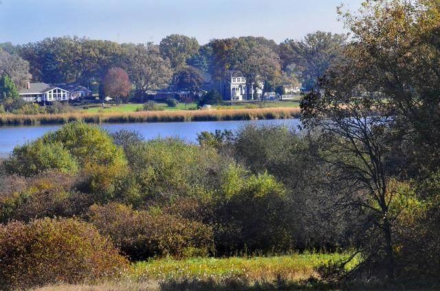 2900 - Lot 1 Riverside Drive, Johnsburg, IL 60051 (MLS #10908446) :: Lewke Partners