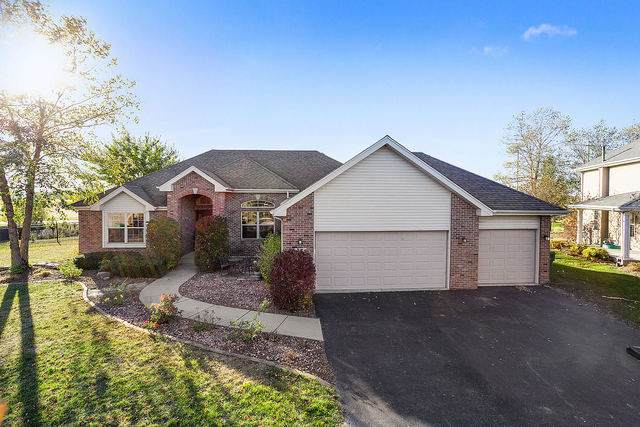 21565 Trick Circle Court, Wilmington, IL 60481 (MLS #10908448) :: Helen Oliveri Real Estate