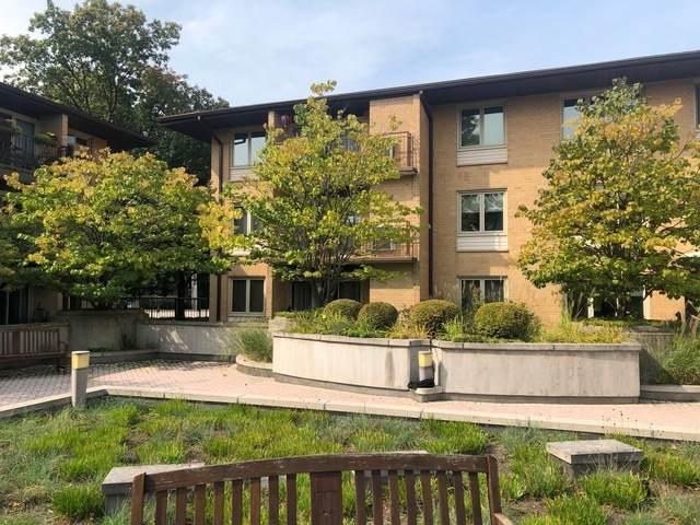 2460 W Talcott Road #219, Park Ridge, IL 60068 (MLS #10908707) :: The Wexler Group at Keller Williams Preferred Realty