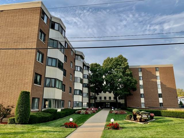 5500 Lincoln Avenue 312E, Morton Grove, IL 60053 (MLS #10909993) :: Helen Oliveri Real Estate