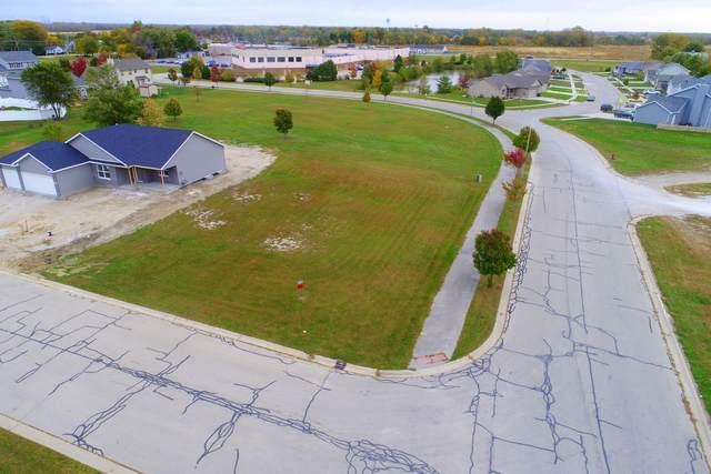 0 Primrose Dr Richards Street, Coal City, IL 60416 (MLS #10910071) :: Helen Oliveri Real Estate