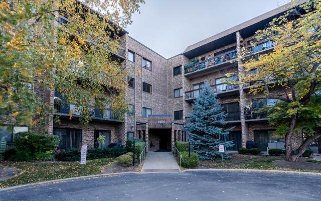 1400 N Elmhurst Road #417, Mount Prospect, IL 60056 (MLS #10910138) :: The Wexler Group at Keller Williams Preferred Realty