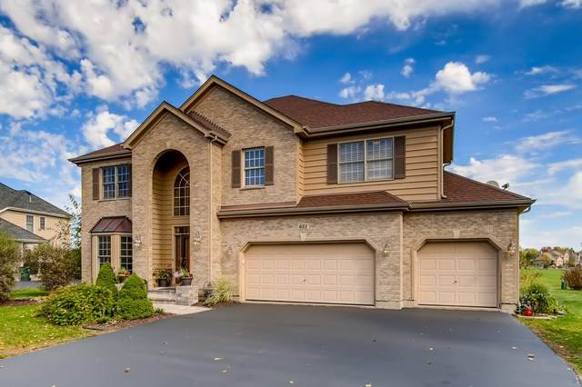 631 Goldenrod Drive, Algonquin, IL 60102 (MLS #10910164) :: Littlefield Group