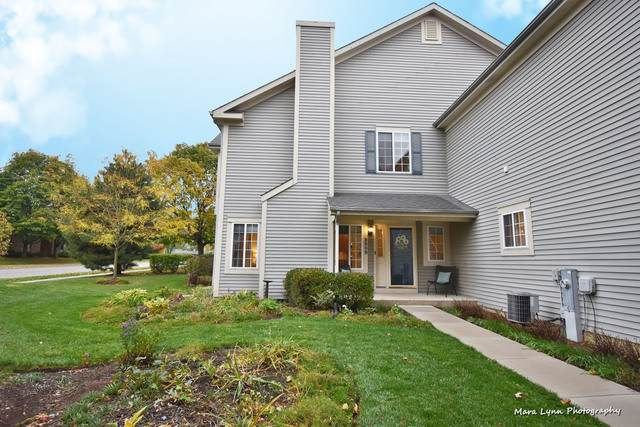 350 Windsor Court B, South Elgin, IL 60177 (MLS #10910405) :: Property Consultants Realty
