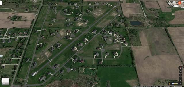 25248 S Doolittle Drive, Monee, IL 60449 (MLS #10910518) :: Lewke Partners