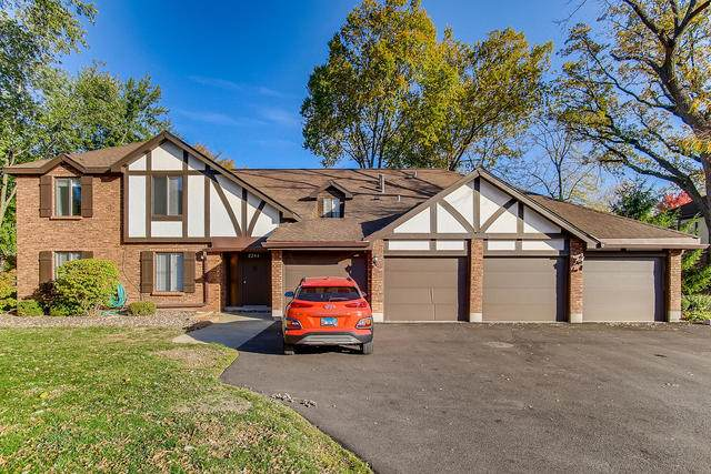 8246 Holly Court 15B, Palos Hills, IL 60465 (MLS #10910574) :: The Wexler Group at Keller Williams Preferred Realty