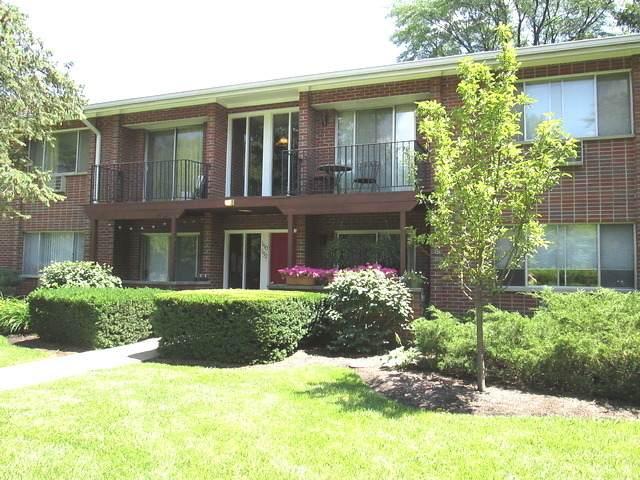 1152 Osterman Avenue B, Deerfield, IL 60015 (MLS #10910597) :: Touchstone Group