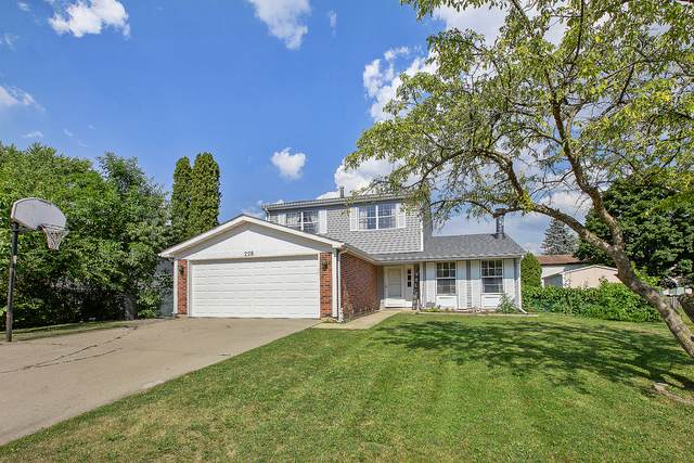 228 Yellow Pine Drive, Bolingbrook, IL 60440 (MLS #10910776) :: The Wexler Group at Keller Williams Preferred Realty