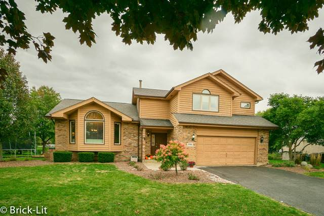 19411 Fiona Avenue, Mokena, IL 60448 (MLS #10910787) :: Helen Oliveri Real Estate