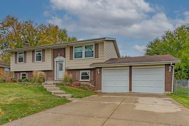 4507 Carr Street, Rolling Meadows, IL 60008 (MLS #10910953) :: Lewke Partners