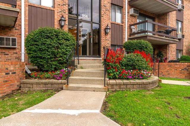 946 Olive Road 4D3, Homewood, IL 60430 (MLS #10910971) :: The Wexler Group at Keller Williams Preferred Realty