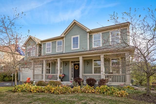 389 Fountain Avenue, Elgin, IL 60124 (MLS #10911006) :: Helen Oliveri Real Estate