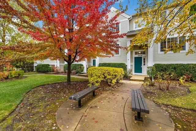 1826 Concord Drive, Glendale Heights, IL 60139 (MLS #10911011) :: John Lyons Real Estate