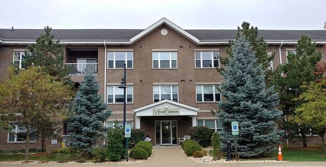 10 N Gilbert Street #316, South Elgin, IL 60177 (MLS #10911031) :: Schoon Family Group