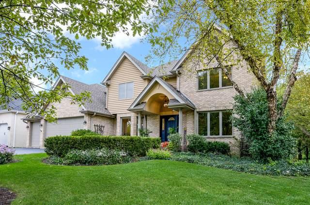 6729 Blackburn Place, Downers Grove, IL 60516 (MLS #10911528) :: Ryan Dallas Real Estate