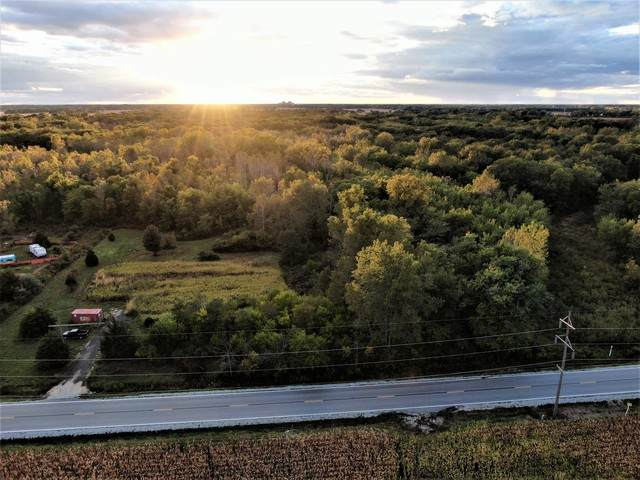 Lot 3 S Zilm Road, Wilmington, IL 60481 (MLS #10911539) :: Ryan Dallas Real Estate